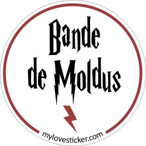 STICKER BANDE DE MOLDUS