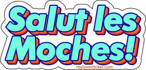 STICKER SALUT LES MOCHES