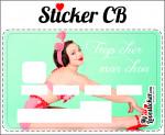 STICKER CARTE BLEUE TROP CHER MON CHOU